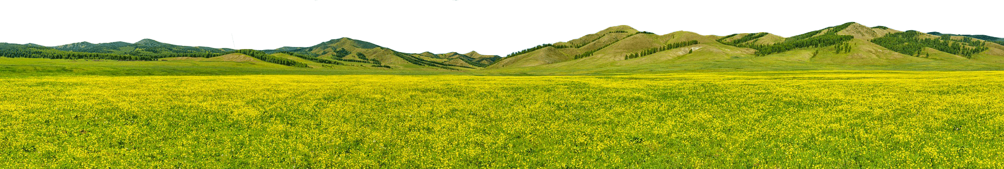 Nature Mongolie